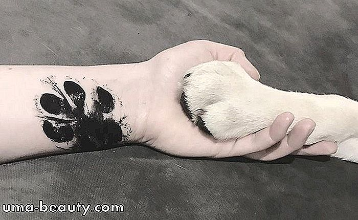 50-dog-paw-tattoos-to-inspire-your.jpg