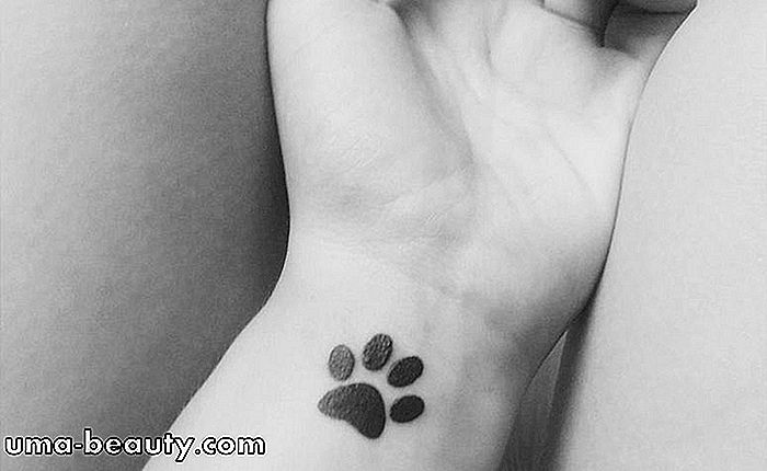 Tatuerad anka charmar an